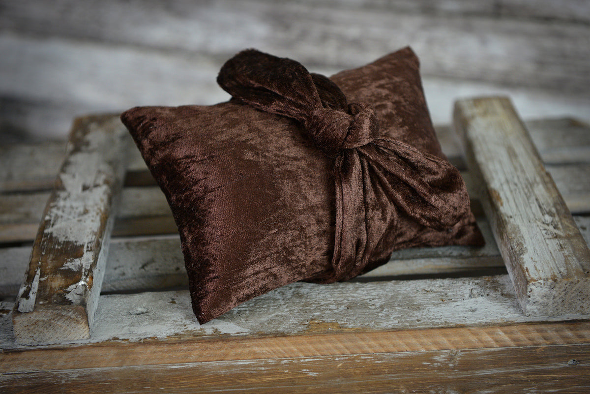 Bandana and Pillow for Newborn Photography
