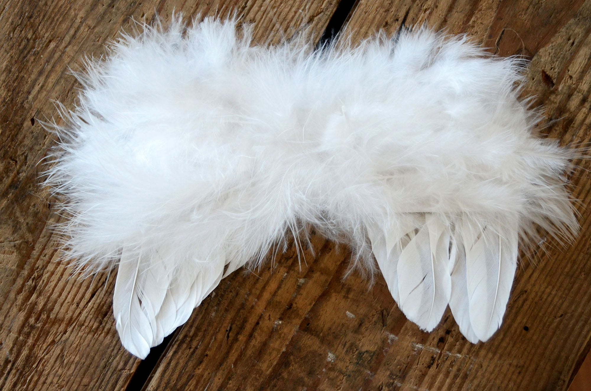 Angel Wings-Newborn Photography Props