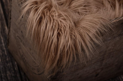 Faux Fur - Camel-Newborn Photography Props