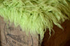 Flokati Rug - Lime Green-Newborn Photography Props