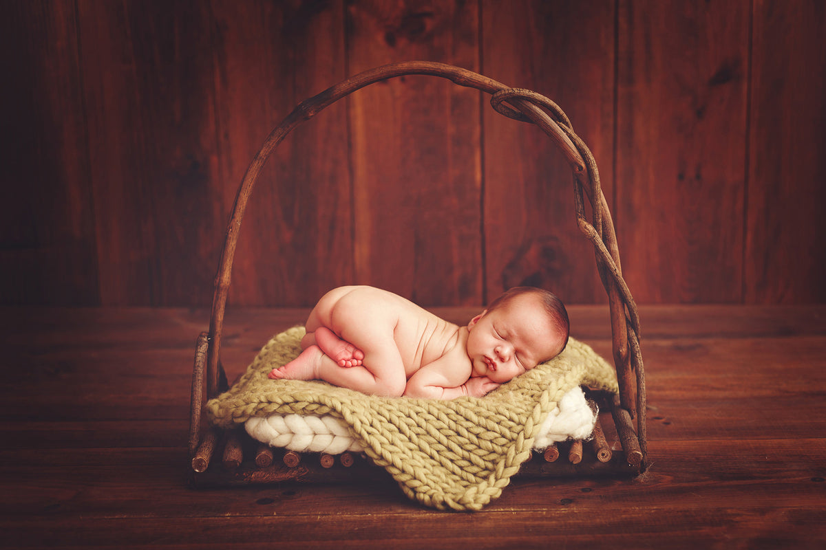 Rustic Bed with Arch-Newborn Photography Props