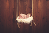 Rustic Swing-Newborn Photography Props