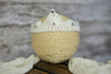 Crotchet Tiara for newborn photography
