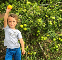 little boy with lemon tree in Hawaii