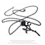 P695 - The Romance of The Black Rose Pendant by Alchemy of England