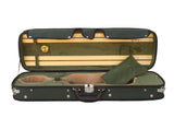 green violin case with hygrometer