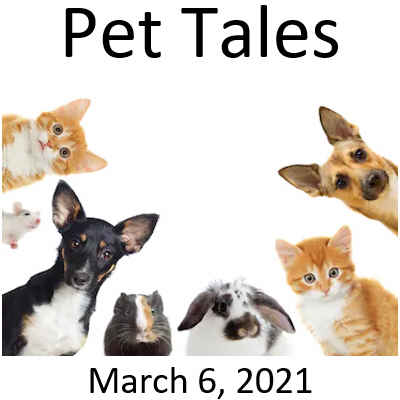 Pet Tales - Society Cabaret Showcase - 3/6/2021