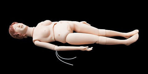 Anatomical Human Patient Care Manikin Model