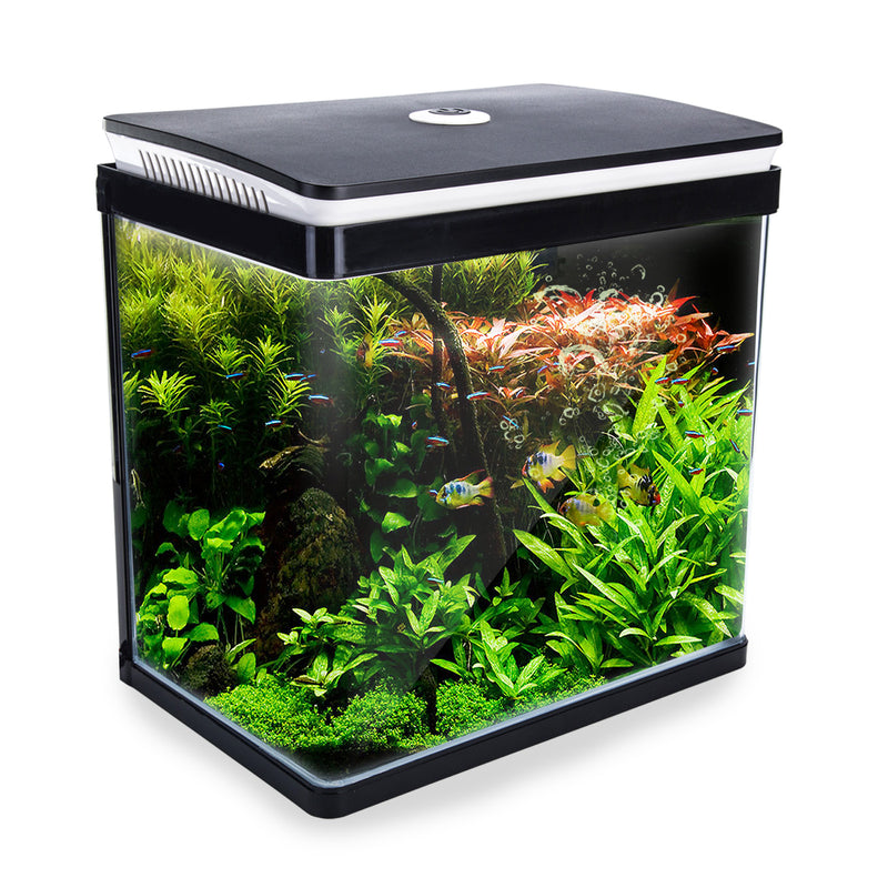 Aquarium Curved Glass RGB LED Fish Tank 30L