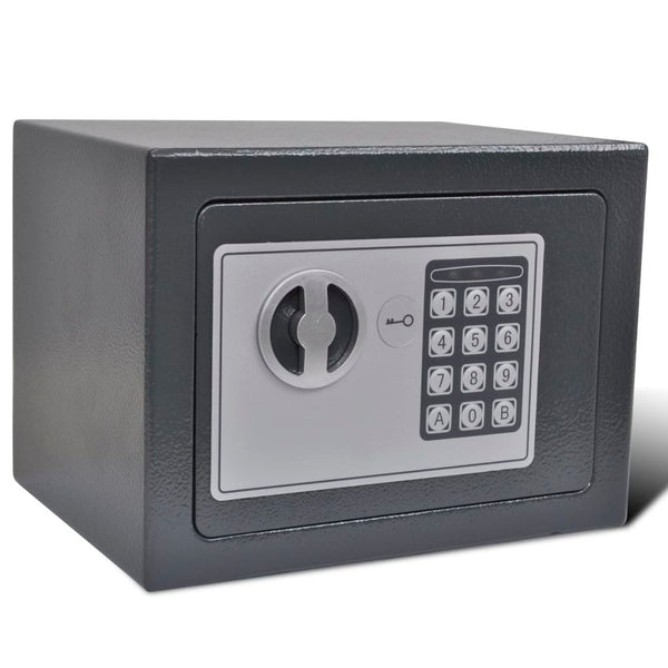Electronic Digital Safe