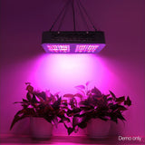 300W LED Grow Light Full Spectrum Reflector