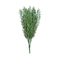Native Tea Tree Stem Uv Resistant 45 Cm