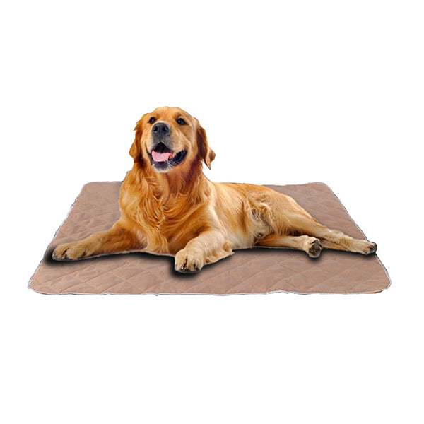 Pawz 2 Pcs 120X180 Cm Reusable Waterproof Pet Puppy Toilet Training Pads