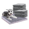 100 Pcs 60X60Cm Charcoal Pet Puppy Dog Training Pads Ultra Absorbent