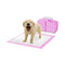Pawz 100 Pcs 60X60Cm Puppy Pet Indoor Toilet Training Pads