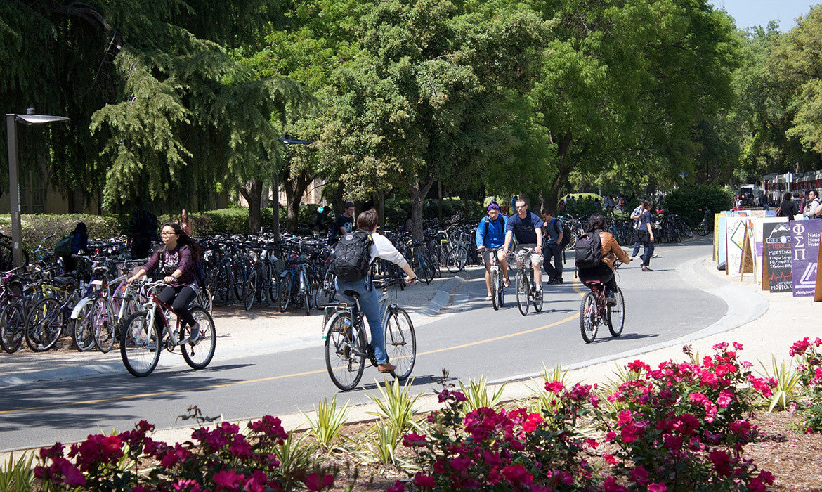 The American city which fell in love with the bicycle
