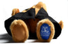 Close up of UoM logo on paw of Graduation bear soft toy