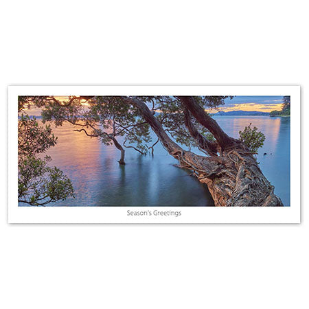 Seasons Greeting Card - Pohutukawa over the water