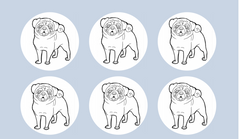 Pug Colour-me-in cake toppers