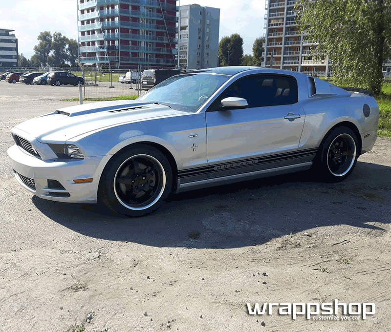 Ford Mustang Side Rocker Panel Stripes