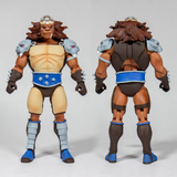 Pre-Order -  (4 Figure Set) Super7 Ultimate Thundercats Wave 2 (6-Inch Action Figures)