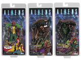 Aliens Series 13 (3-Figure Set)