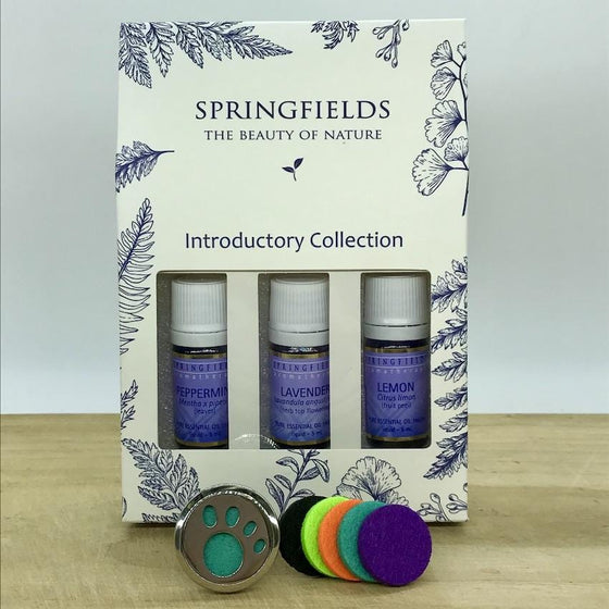 Aroma Car Diffuser Springfields Combo - Paw Print