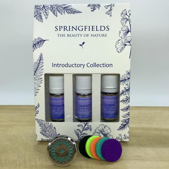 Aroma Car Diffuser Springfields Combo - Sunflower