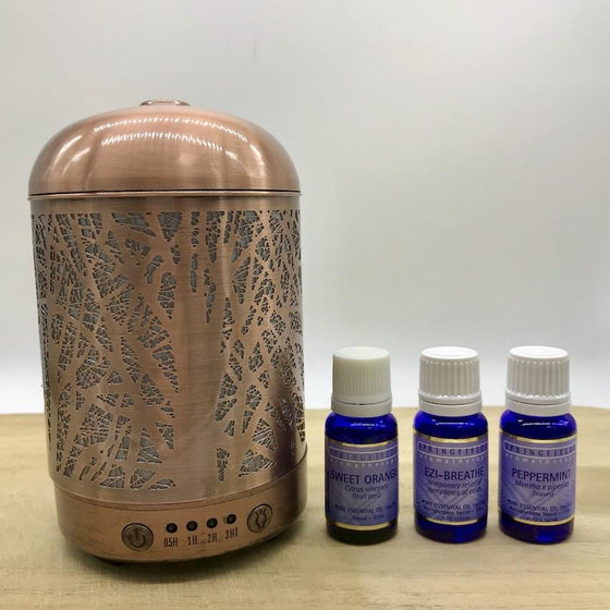 Winter Combo Lantern Forest & Springfields Essential Oils