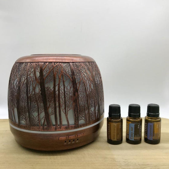 Winter Combo Lantern Large Brushed Bronze & doTERRA Essential Oils