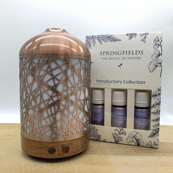 Bundle - Lantern | Springfields Introductory Collection