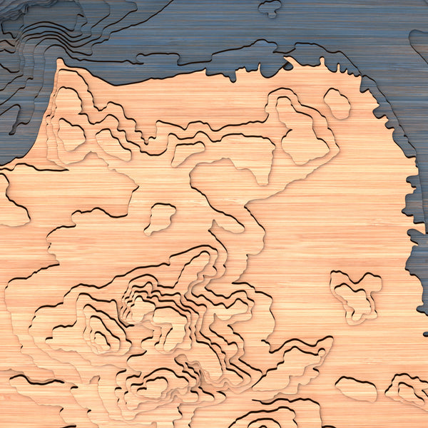 san francisco topographic wood map closeup