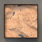 whistler blackcomb topographic wood map full