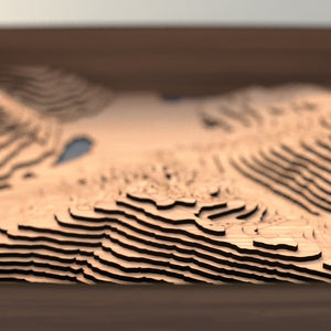 whistler blackcomb topographic wood map depth