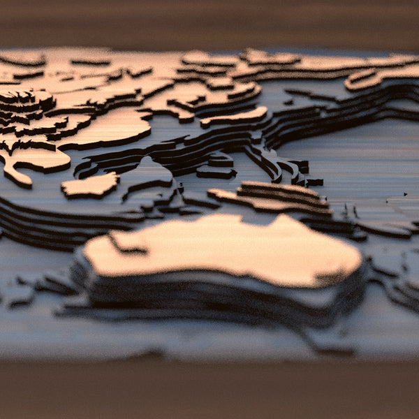 world topographic wood map detail