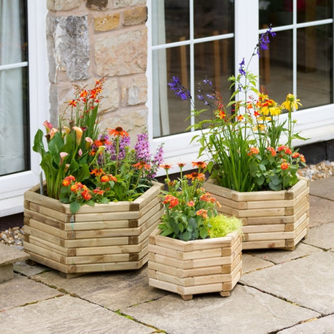 Zest The Marford Hexagonal Planters - LOCAL DELIVERY ONLY