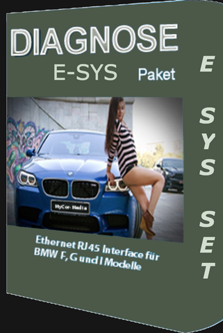 BMW E-SYS English & German Electronic Delivery Limited Quantity - BMW Diagnose Software INPA Download