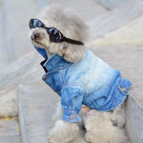Denim Jacket Fashion Cats & Dogs Clothes