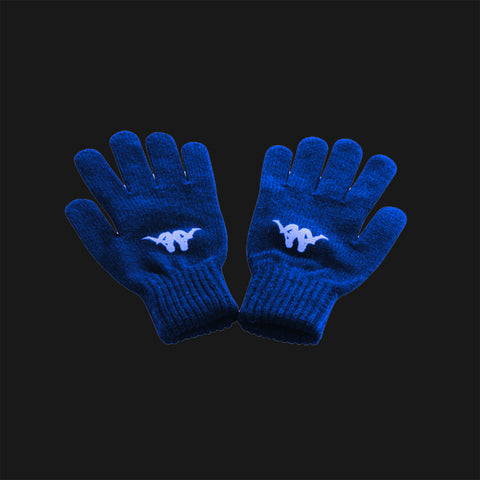 Pompey Gloves Navy