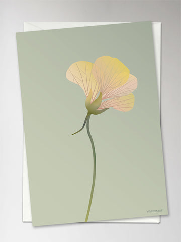 MONK CRESS dusty green - Greeting Card