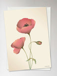 Card with Poppy from ViSSEVASSE