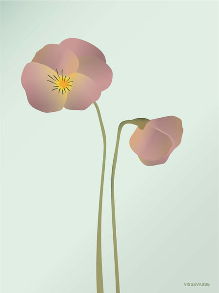 Pansy poster from ViSSEVASSE with purple pansy
