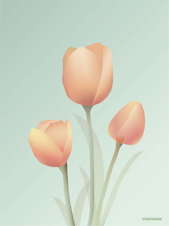 Tulips poster from ViSSEVASSE with light rose tulips