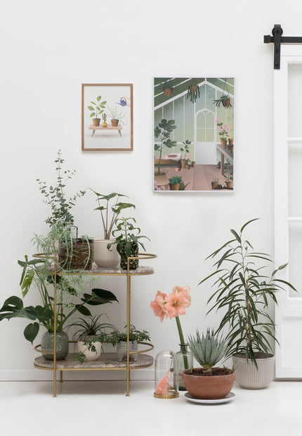 Growing plants and orangery poster from Vissevasse