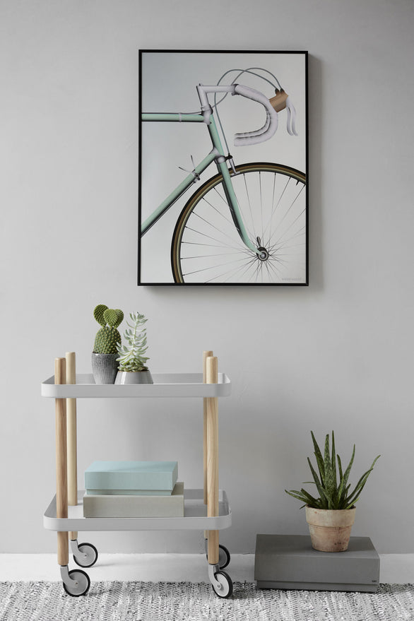 Racing bicycle poster vissevasse