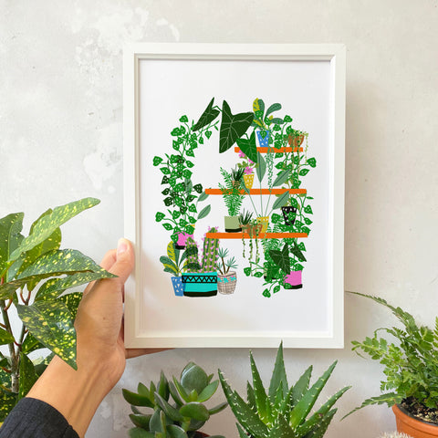 Plants on a shelf Print