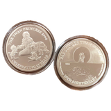 Swan Princess Coin