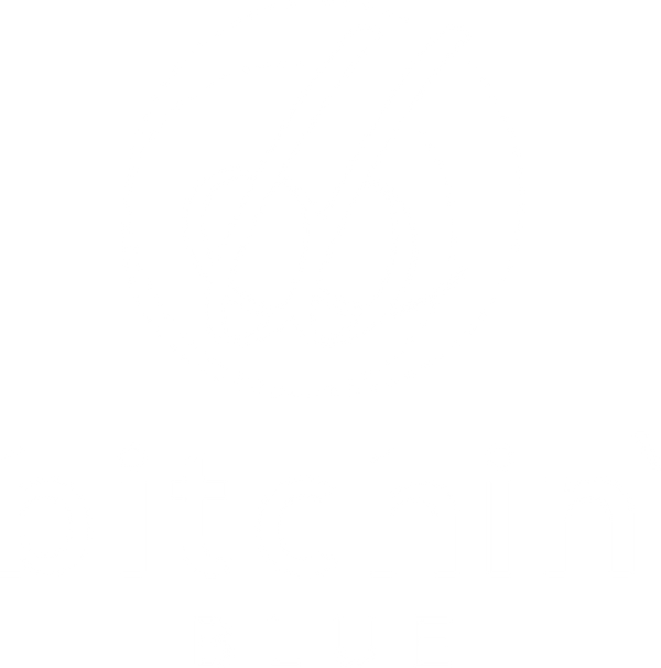 Bitchin' Blue