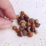Miniature hazelnuts and chestnuts