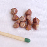 Miniature hazelnuts 1/4 scale